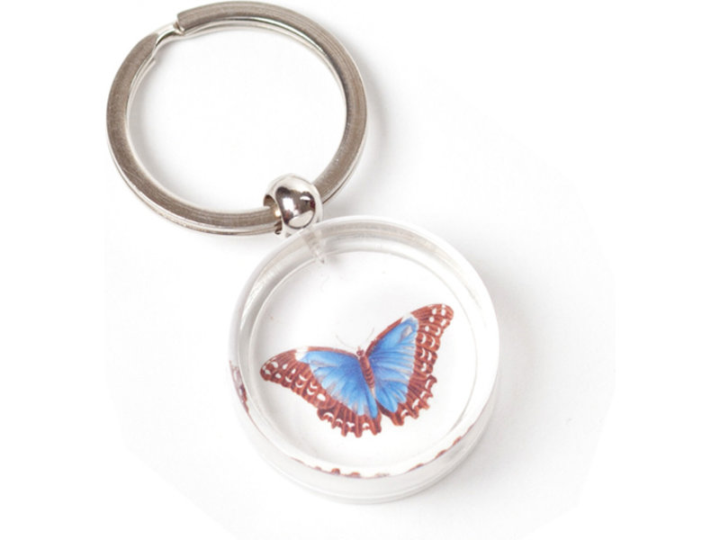 Schlüsselanhänger in giftbox, Butterfly, M.S. Merian
