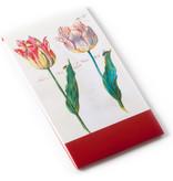 Gogonotes, Twee tulpen met insecten, Marrel