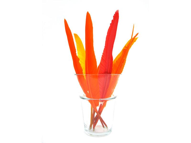 Glazen display || Verenpennen