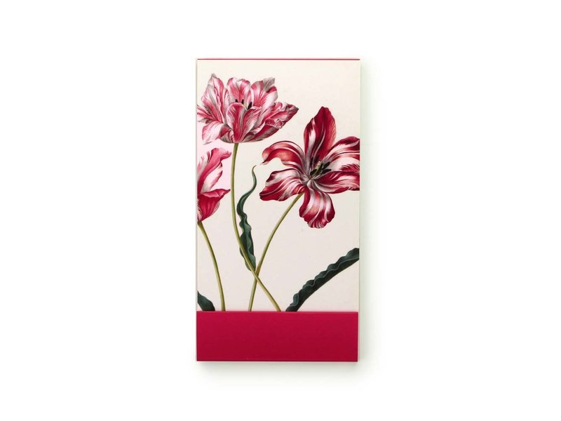 GoGoNotes, Trois tulipes, Merian, Collection Teylers