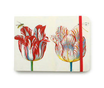 SketchPad, Four Tulips with insects, Marrel