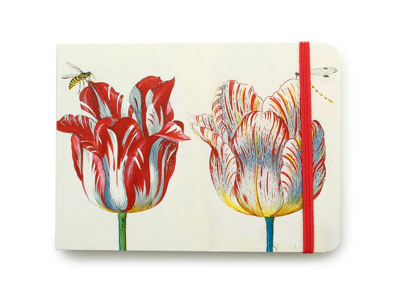 Schetsboekje, Vier tulpen met insecten, Marrel