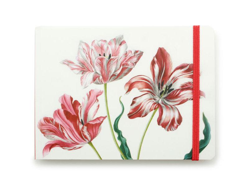 Schetsboekje, Drie tulpen, Merian