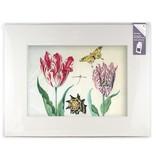 Passe-partout met reproductie, XL, Twee tulpen met schelp en insecten, Marrel