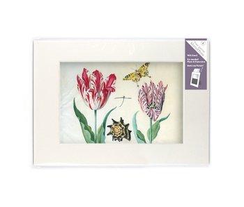 Passe-partout met reproductie, L, Twee tulpen met schelp en insecten, Marrel