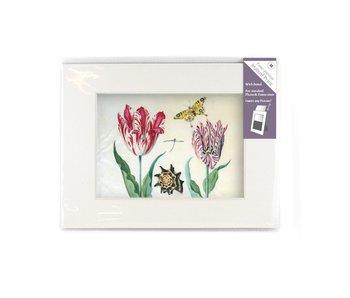Paspartú con reproducción, M, Dos tulipanes con concha e insectos, Marrel