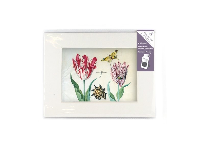 Passe-partout met reproductie, M, Twee tulpen met schelp en insecten, Marrel