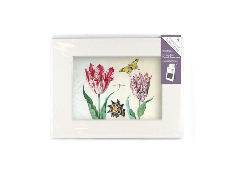 Passe-Partout mit Fortpflanzung, M, Zwei Tulpen mit Muschel und Insekten, Marrel