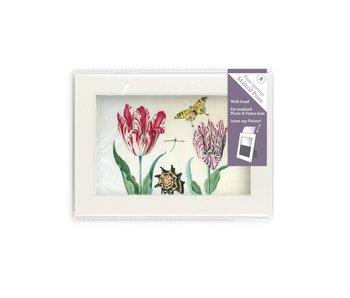Passe-partout met reproductie, S, Twee tulpen met schelp en insecten, Marrel