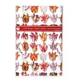 Papier cadeau, Tulipes Marrel