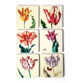 Posavasos, tulipanes Ksenia