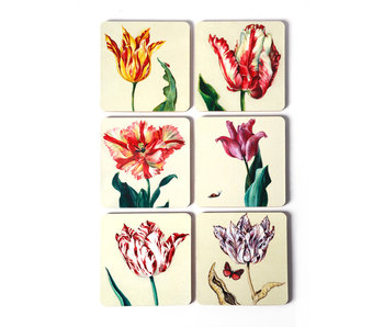 Coasters, set of 6, Ksenia tulips