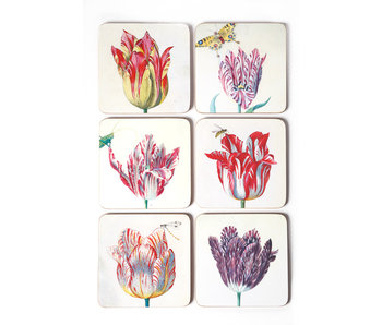 Coasters, set of 6, Tulips, Marrel