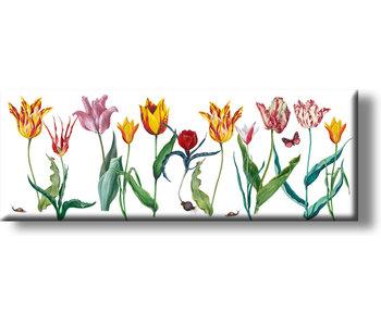 Imán de nevera, tulipanes Panorama