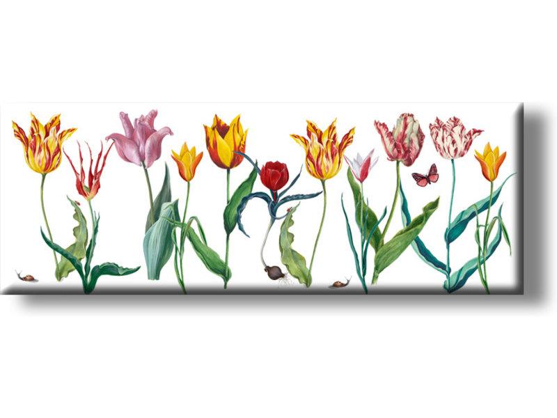 Magnet pour frigo, tulipes Panorama