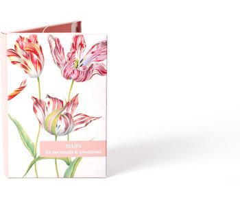 Carpeta de tarjetas, Tulipanes Fitzwilliam