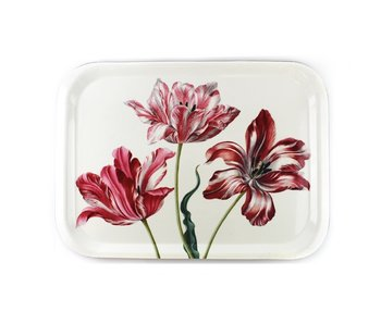 Tray Laminate large, Three tulips, Merian