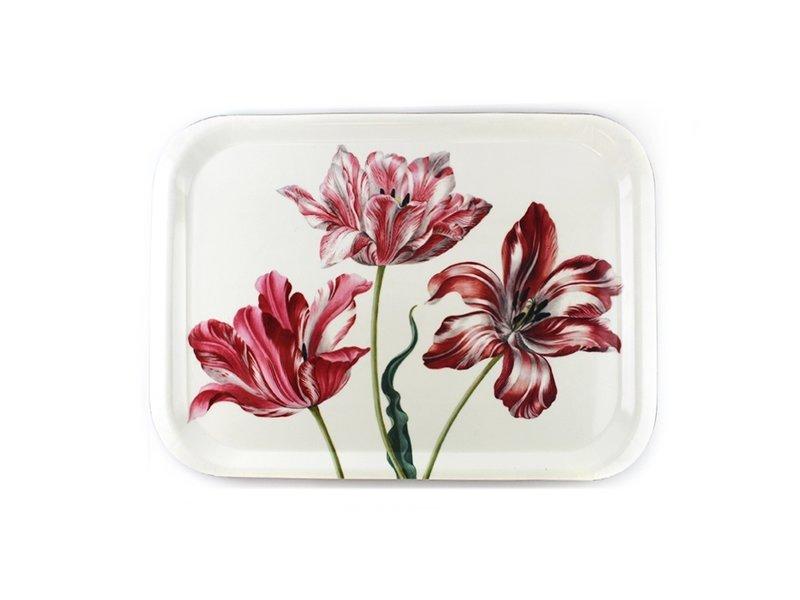 Tablett Laminat groß, drei Tulpen, Merian