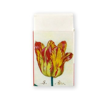 Eraser, Tulips, Marrel