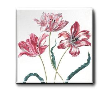 Aimant de réfrigérateur, trois tulipes, Merian