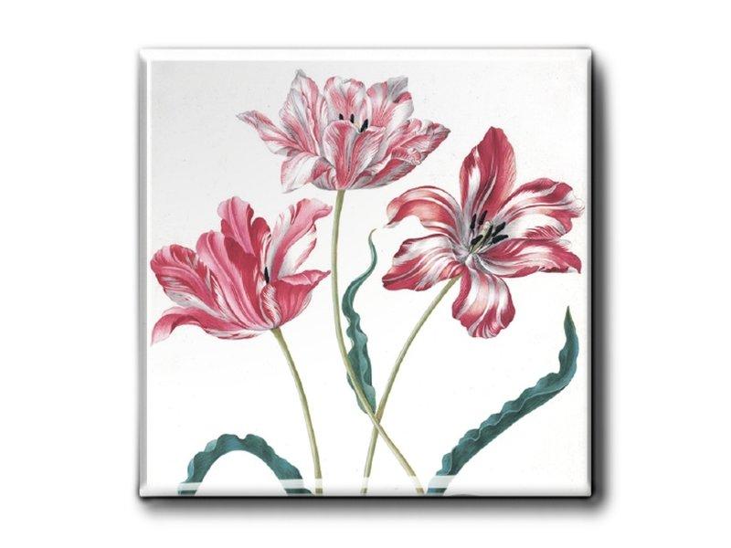 Kühlschrankmagnet, drei Tulpen, Merian