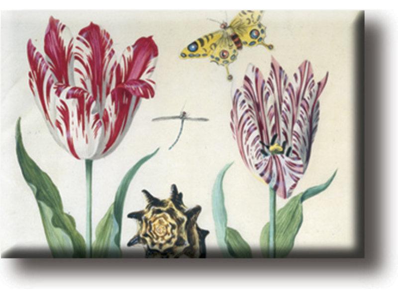 Koelkastmagneet, Twee tulpen, schelp en insecten, Marrel