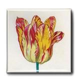 Aimant pour réfrigérateur, Tulipe jaune rouge, Marrel