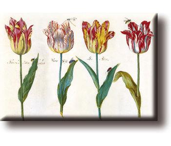 Aimant pour réfrigérateur, quatre tulipes avec insectes, Marrel