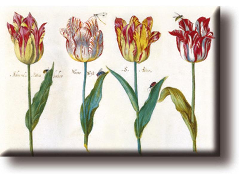 Kühlschrankmagnet, vier Tulpen mit Insekten, Marrel