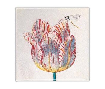 Imán de nevera, tulipán blanco con insecto, marrel