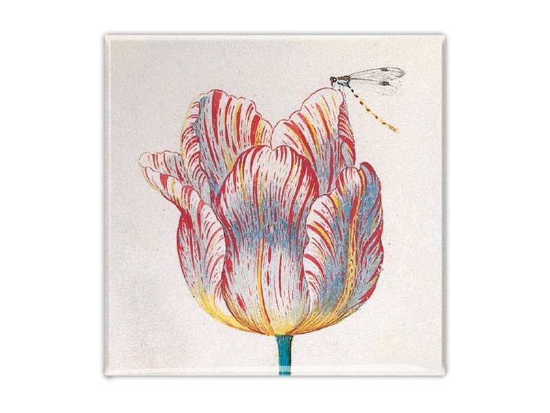 Kühlschrankmagnet, weiße Tulpe mit Insekt, Marrel