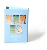 Kartenmappe, japanische Blüten, Fitzwilliam-No9