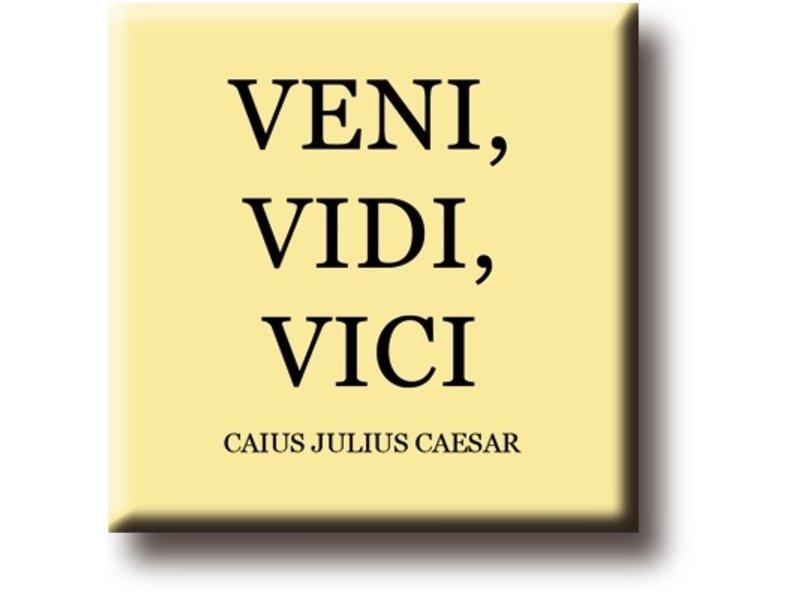 Imán de nevera, Julio César, Veni, Vidi, Vici