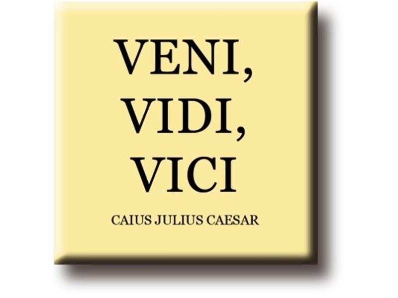 Kühlschrankmagnet, Julius Caesar, Veni, Vidi, Vici