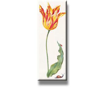 Imán de nevera, tulipán con insectos