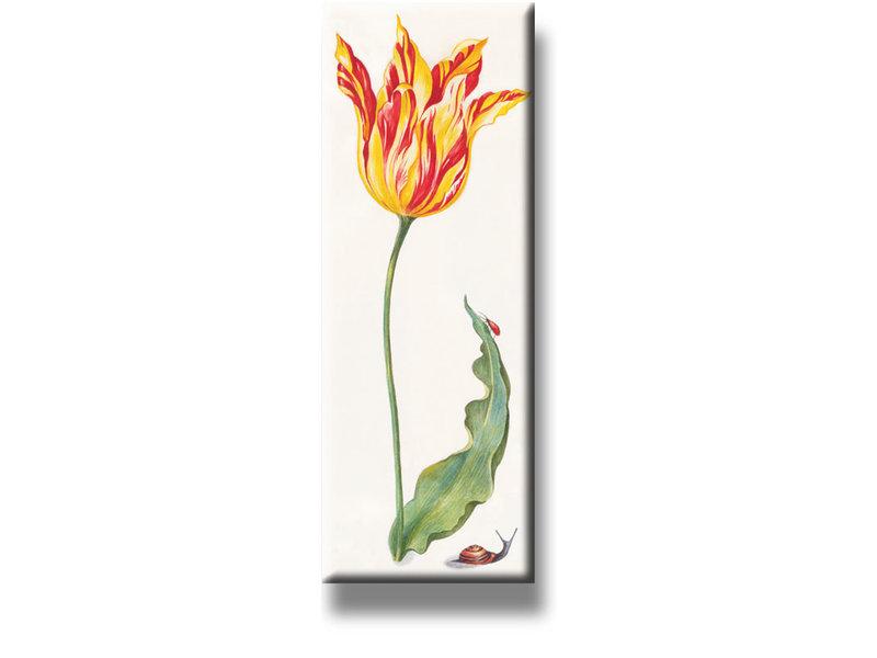 Koelkastmagneet, Tulp met insecten