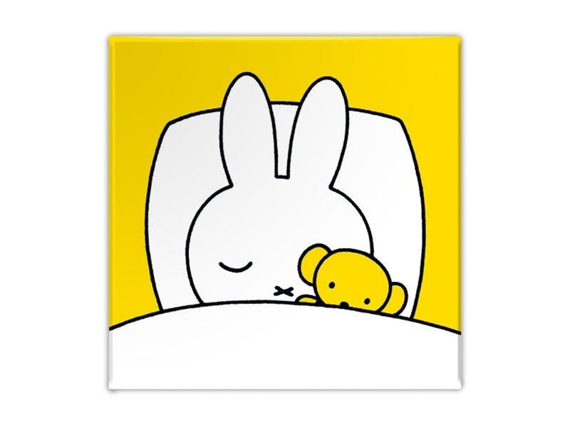 Koelkastmagneet,  Nijntje slaapt