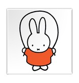 Fridge magnet, Miffy is jumping rope