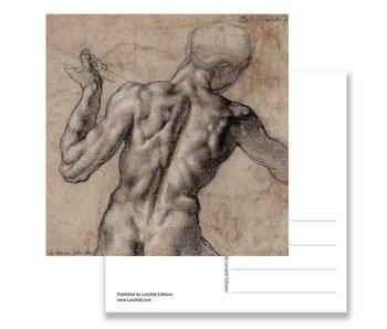 Ansichtkaart, Naakte man, op de rug gezien, Michelangelo