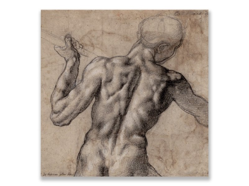 Postcard, Male Nude Seen From the back, Michelangelo,