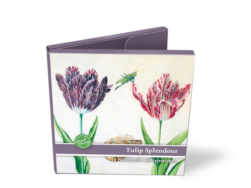 Kartenordner, Quadrat, Tulpenpracht