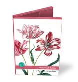 Porte-cartes, grandes tulipes historiques