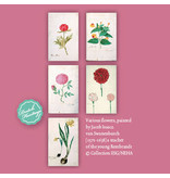 Card Wallet, Botanical Beauty