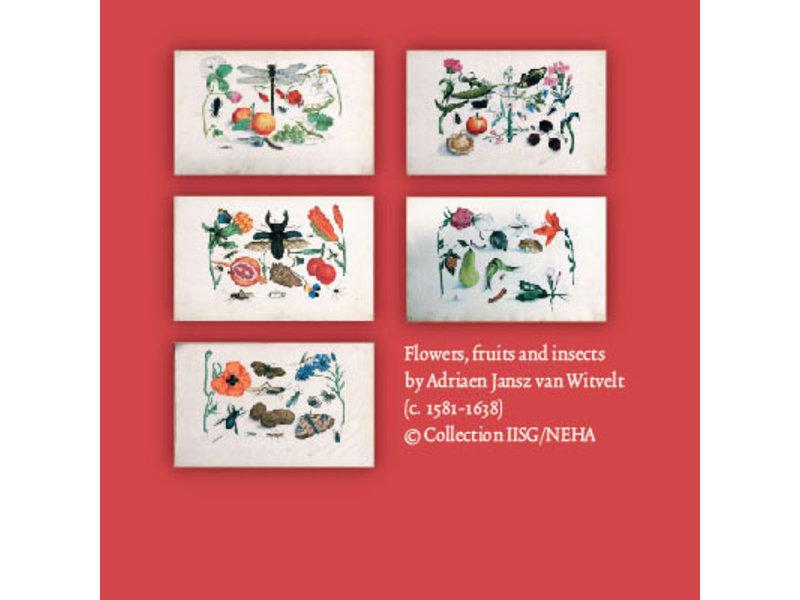 Carpeta de tarjetas, pequeña, flora y fauna