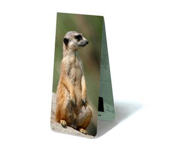 Marque-page magnétique, suricate