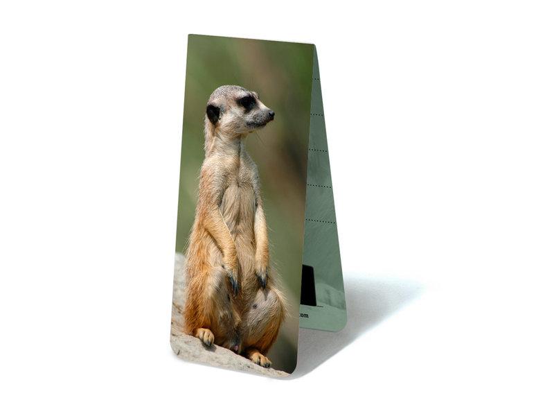 Magnetic Bookmark, Meerkat