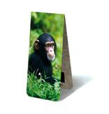 Magnetische Boekenlegger, Baby Chimpansee