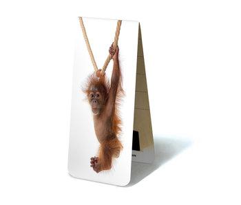Marque-page magnétique, bébé orang-outan
