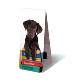 Magnetic Bookmark, Puppy on books