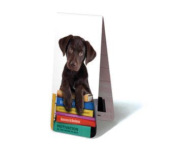 Marque-page magnétique, chiot, chien sur les livres